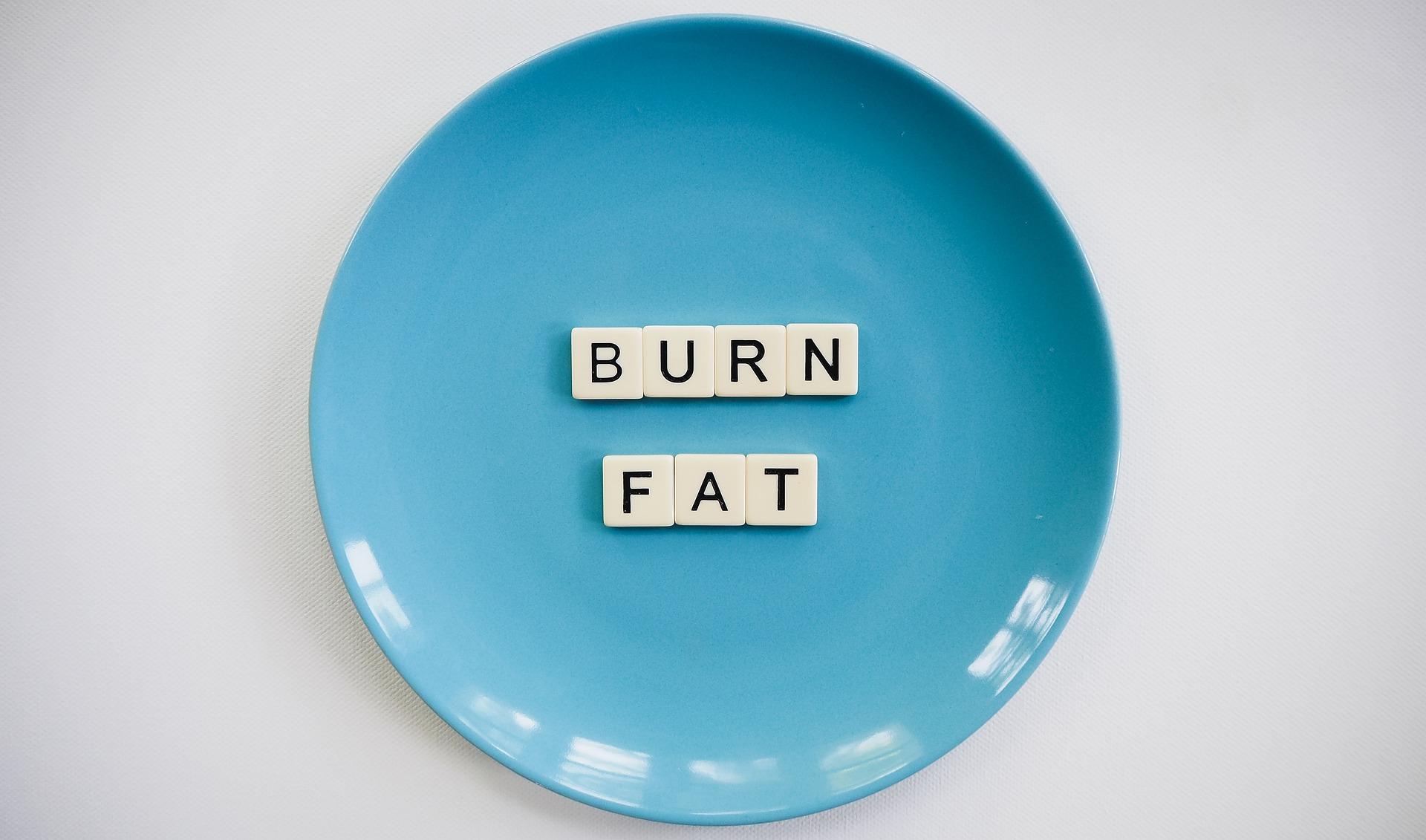 Best Fat Burning Recipes